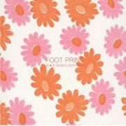 FOOT PRINT~花*花WORKS 2000-2003